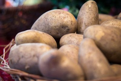 How To Grow Potatoes Indoors, Using Straw & A Garbage Bag