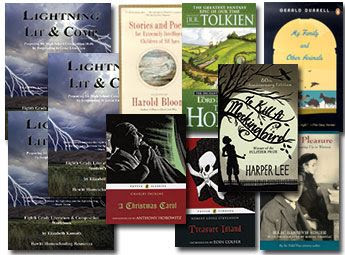 Lightning Literature and Composition Pack Grade 8 with Stories and Poems