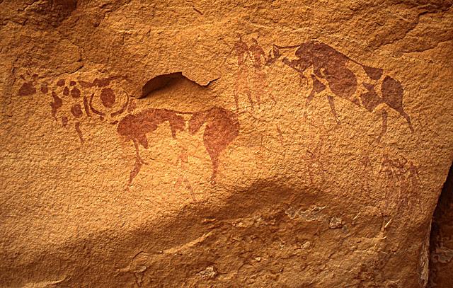 Pitture rupestri: bufali