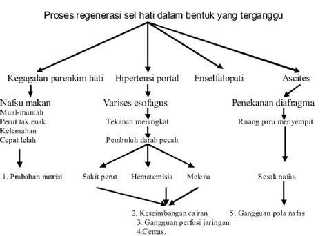 pathway hematemesis melena teguh subianto