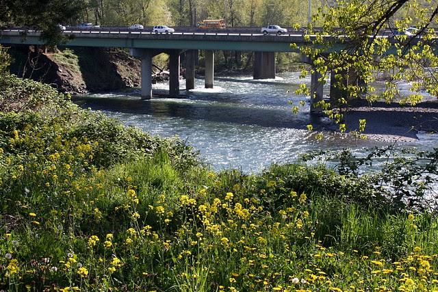 I-205 Bridge, High Rocks