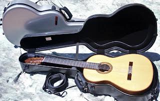 Bam Guitar case