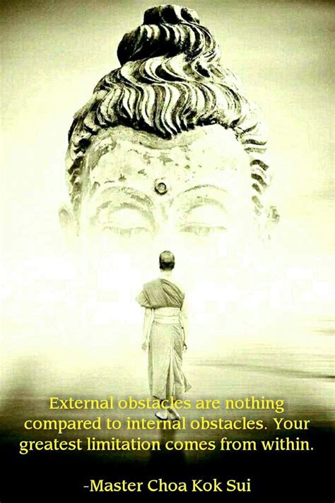 367 Best Grand Master Choa Kok Sui Quotes Gmcks Quotes Gambarsuratcom