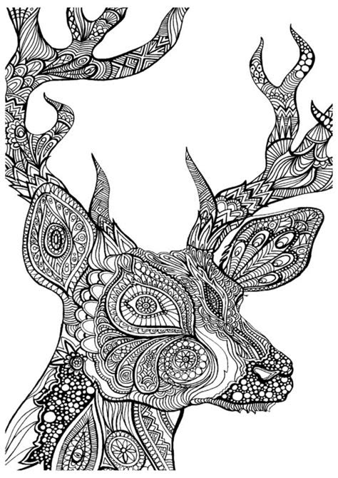 coloring pages terrific coloring pages  animals