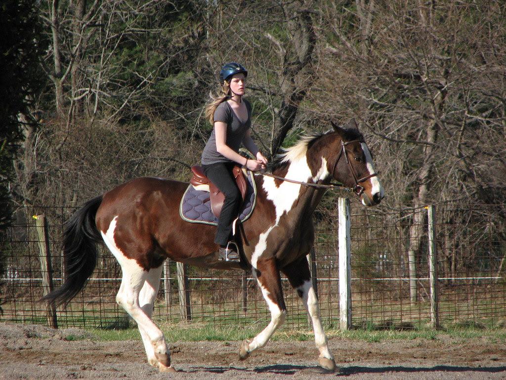 Riding Shiloh