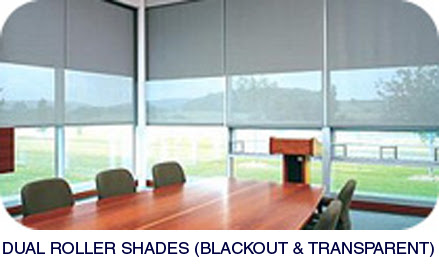 50 Great Dual Roller Shades Blackout Transparent Zachary Kristen