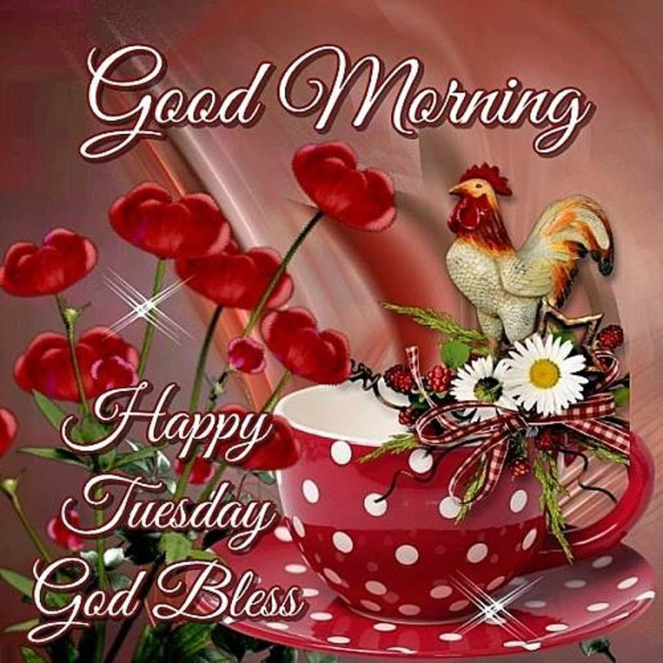Good Morning Happy Tuesday God Bless Image Pictures Photos And