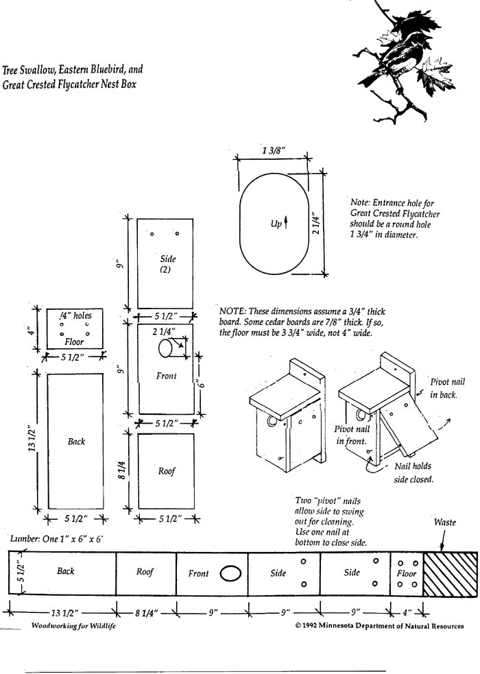 Birdhouse plans for owls   Project shed