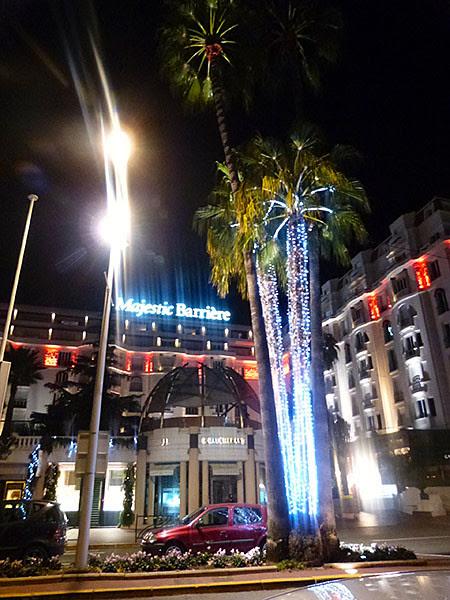 palmiers de fête