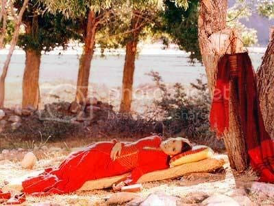 http://i347.photobucket.com/albums/p464/blogspot_images1/Desamuduru/paap.jpg