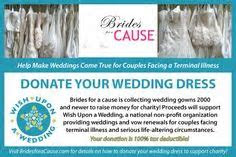 31 Best Wedding Donation Ideas images in 2012   Alon livne