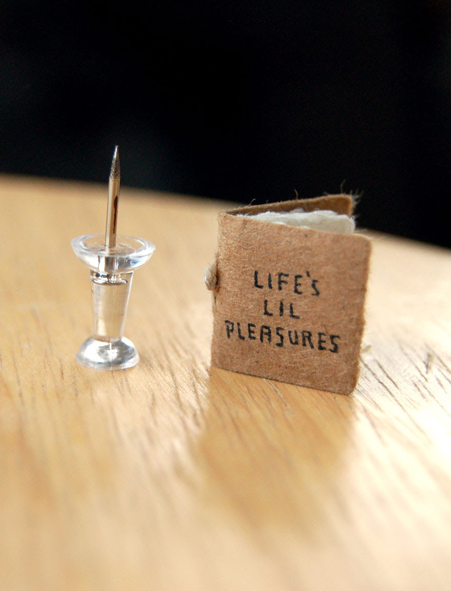 life's lil' pleasures book
