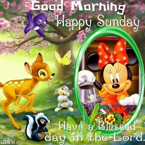 Disney Good Morning Happy Sunday Pictures Photos And Images For