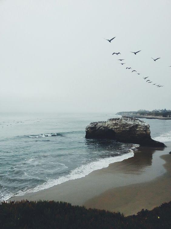 sea photography 8