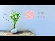 Form 1 - Task