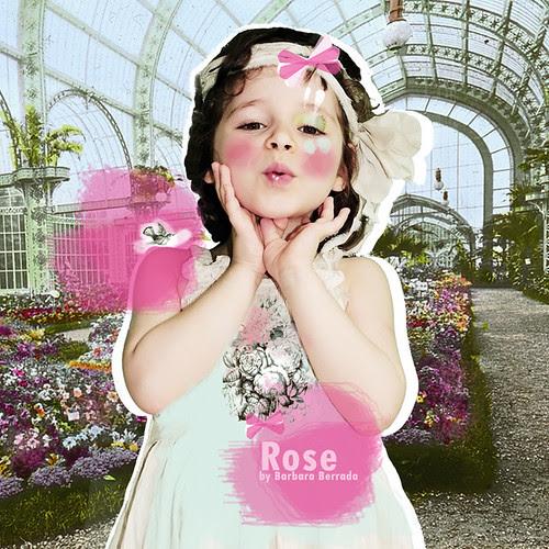 rose01d