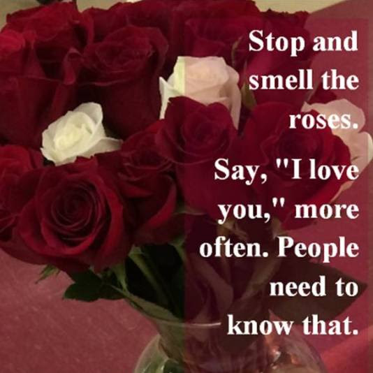Quotes About Smell The Roses 45 Quotes