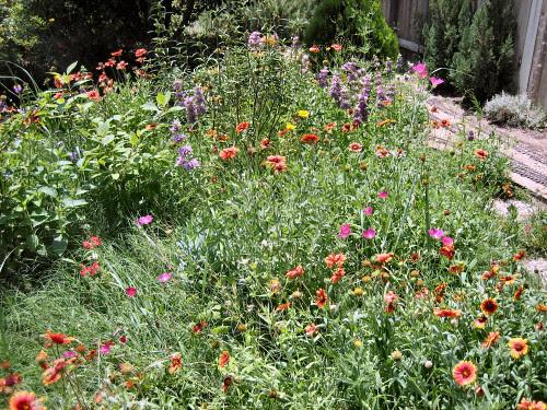 The Wildflower Garden on John Frank's Garden Railroad