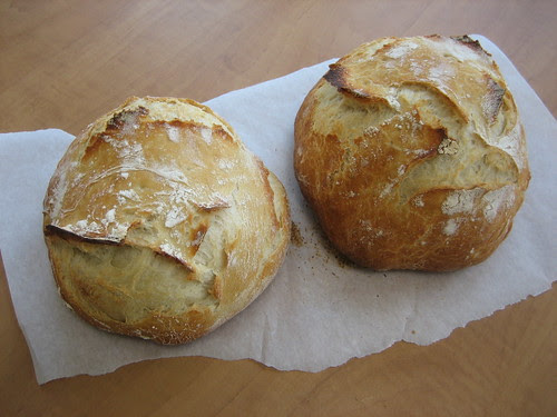 5 minute a day Artisan breads