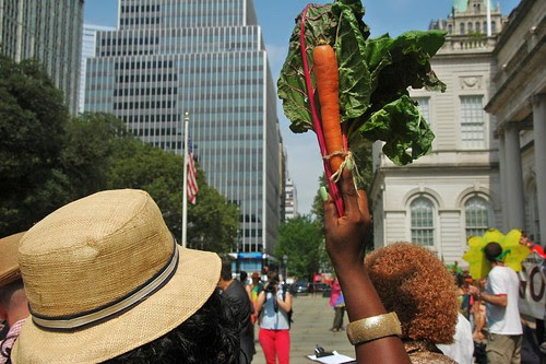 Chard and Carrot