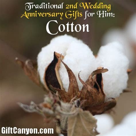 Traditional 2nd Wedding Anniversary Gifts for Him: Cotton