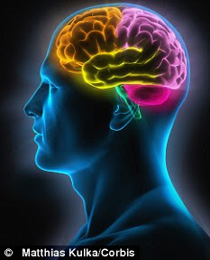 The brain starts to shrink from around the age of 20, by as much as 10 to 15 per cent over the rest of your lifetime