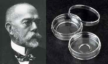 161 aniversario del nacimiento de Julius Richard Petri