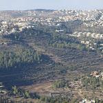 בתום 6 שנות תכנון: אושרה תוכנית המתאר של המועצה האזורית מטה יהודה - כלכליסט