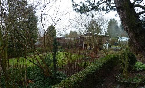 pilgrimage to an allotment garden