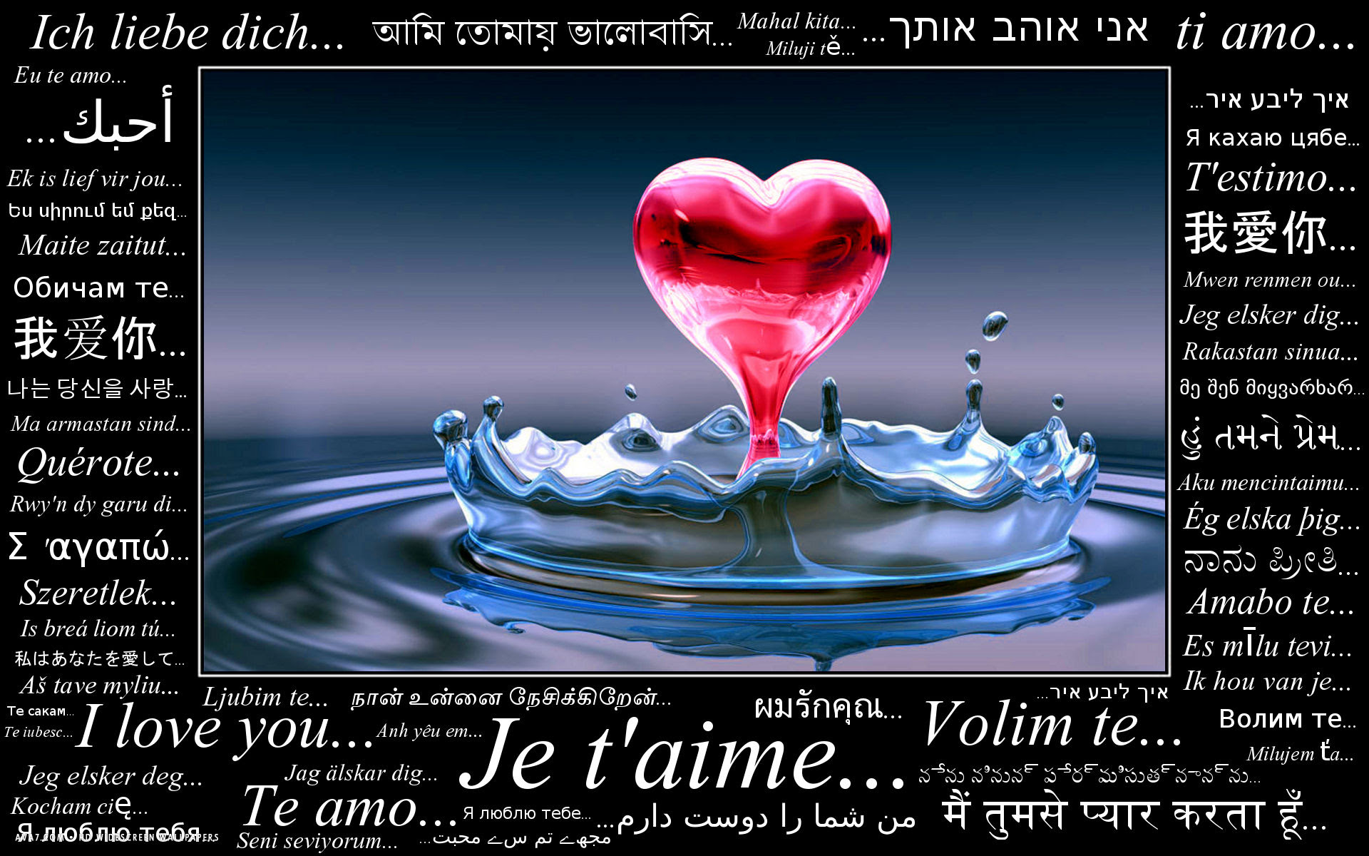 i love you languages translation french german spanish italian chinese russian hd widescreen wallpaper