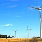 Loi Brottes : le secteur éolien soulagé