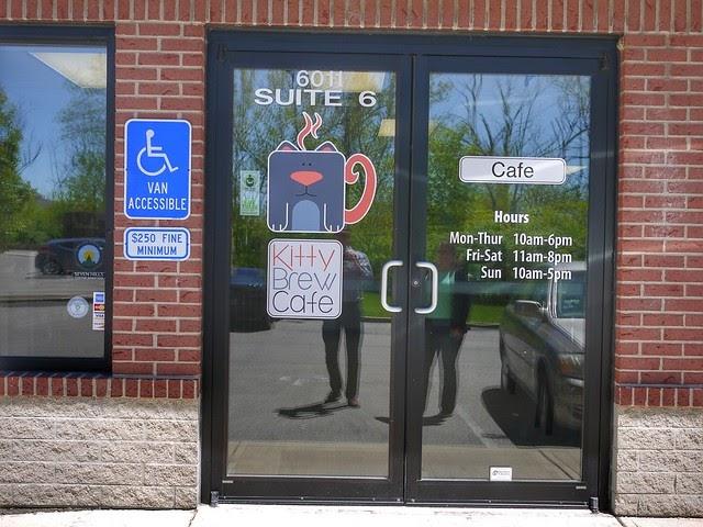 Cincinnati Area Cat Cafe