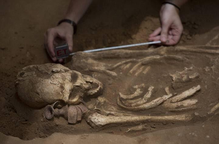 Todos los esqueletos eran de tamaño normal, no se halló ningún gigante del tamaño del legendario Goliat.