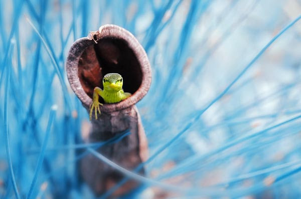 Best 35 Photos Taken At The Perfect Time | Photography ...
