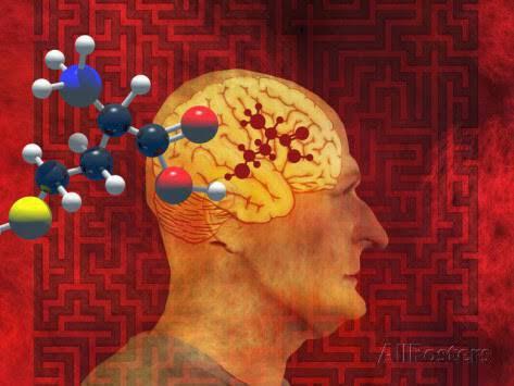 carol-mike-werner-homocysteine-and-alzheimer-s-disease
