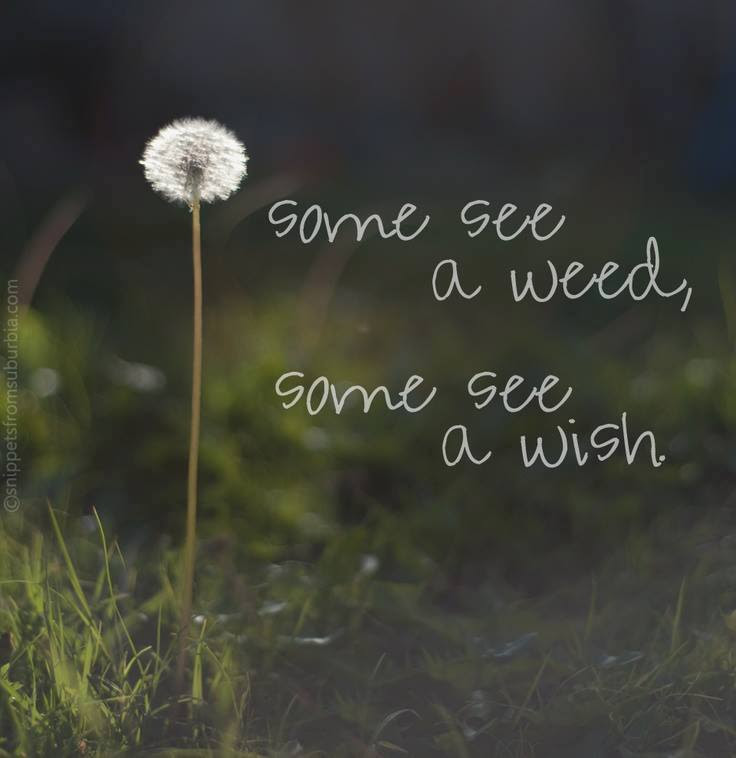 50 Inspirational Motivational Quotes Thoughts And Memes