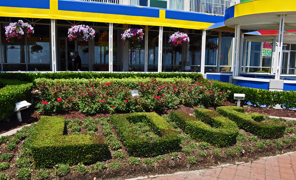 Hotel Landscaping (6)