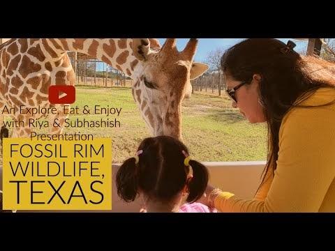 Fossil Rim Wildlife Center, Texas | Safari | Explore, Eat & Enjoy with Riya & Subhashish