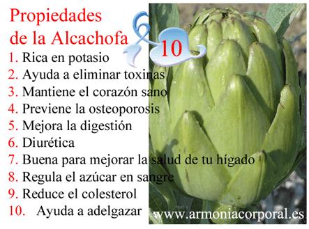 como actua la alcachofa para adelgazar