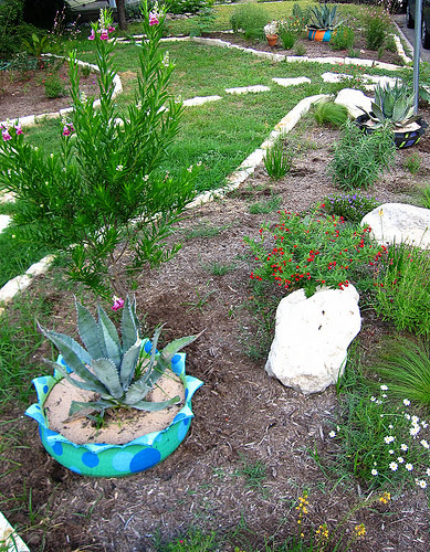3 Landscaping Low Cost Landscaping Ideas