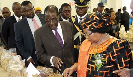 President Mugabe explains the importance of small grains to Malawian President Joyce Banda while touring a stand where rapoko was on display at the trade fair in Bulawayo on April 26, 2013. (Picture by Eliah Saushoma) by Pan-African News Wire File Photos