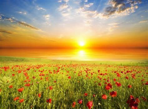 kata kata motivasi pagi islami mutiara bijak pagi hari