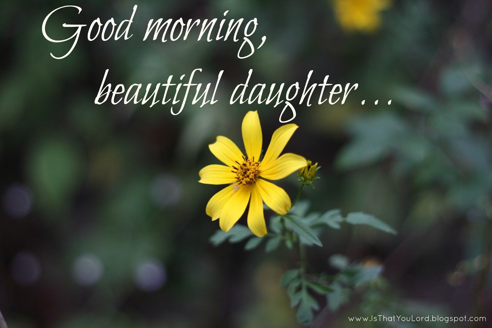 Good Morning Beautiful Daughter Pictures Photos And Images For