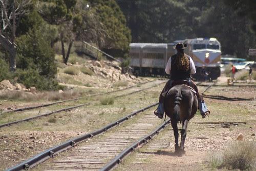 Mule vs. Train