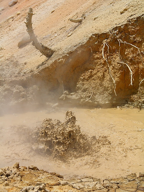 IMG_4712 Mudpot at Sulphur Works