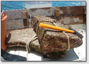 """Небольшой каменный клин, поднятый на палубу корабля со дна океана из под блока """"Дороги Бимини""""."""