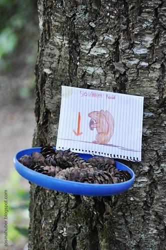 Squirrel Treats
