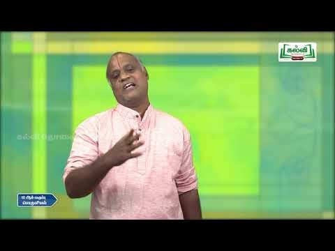 12th Economics  Banking Q&A Part 2 Q&A 3Kalvi TV