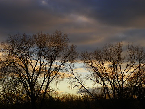 Palos Hills, Saganashkee Slought sunset 10.31.2009 (8)
