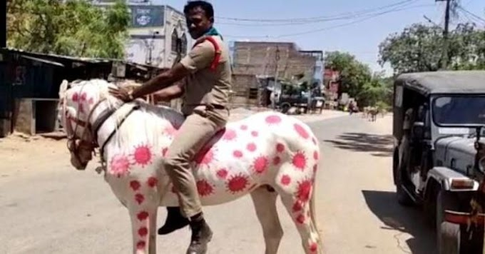 After Tamil Nadu Cop's 'Coronavirus Helmet,' Andhra Cop Rides Horse Painted With The Virus